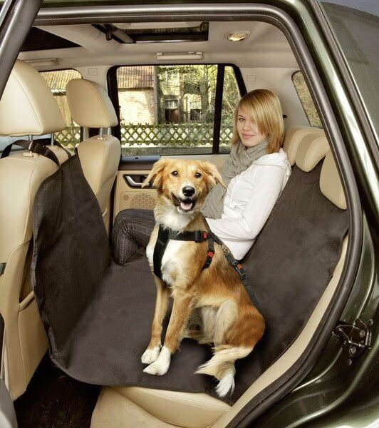 couverture de protection car safe easy accessoires voiture chien. Black Bedroom Furniture Sets. Home Design Ideas