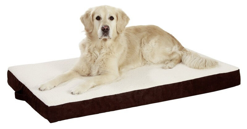 coussin m moire de forme pour chien ortho bed coussin et. Black Bedroom Furniture Sets. Home Design Ideas