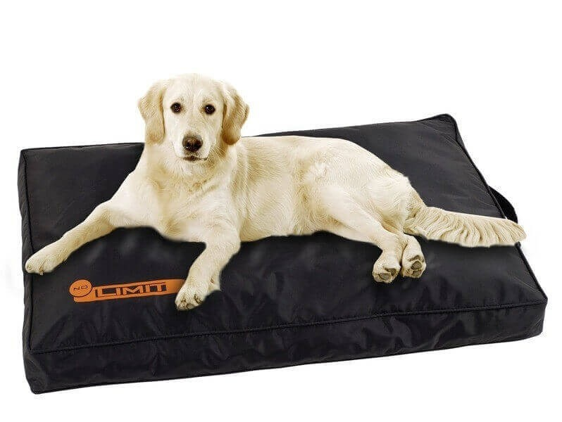 coussin no limit id al pour chiens avec allergies. Black Bedroom Furniture Sets. Home Design Ideas