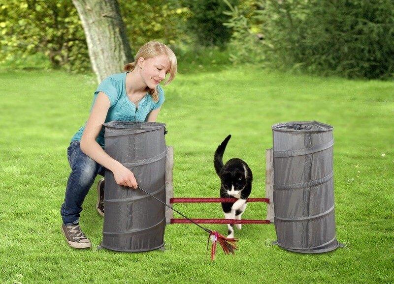 Cat agility jouet sportif pour chats ducation du chat for Jeu sportif exterieur