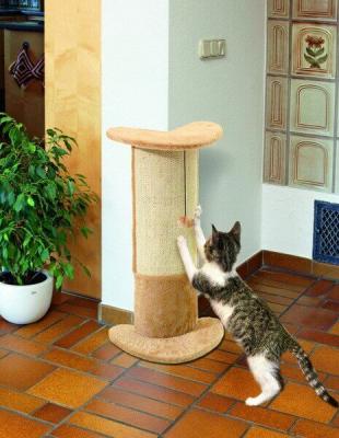 Árbol para gatos de esquina Basic Line Santo - Con juguete