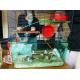 20366_Cage-Habitat-pour-hamster-et-gerbille_de_Melissa_11664259976049bbe3de5907.54510507