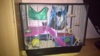 Cage-pour-Rat-et-Furet--ZENO--Knock-Down_de_Marine_127512739656d7094aabb066.52437918