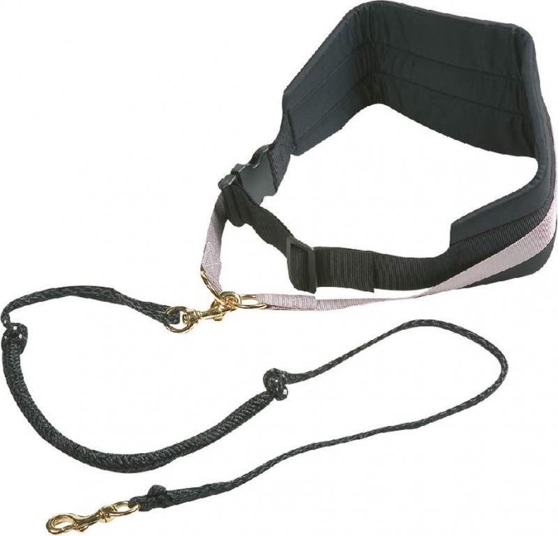 Ensemble CaniCross - ceinture et laisse élastique