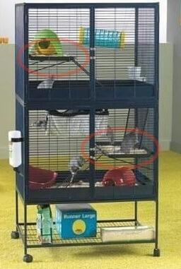Plateforme de rechange pour cage suite Royale haut ou bas