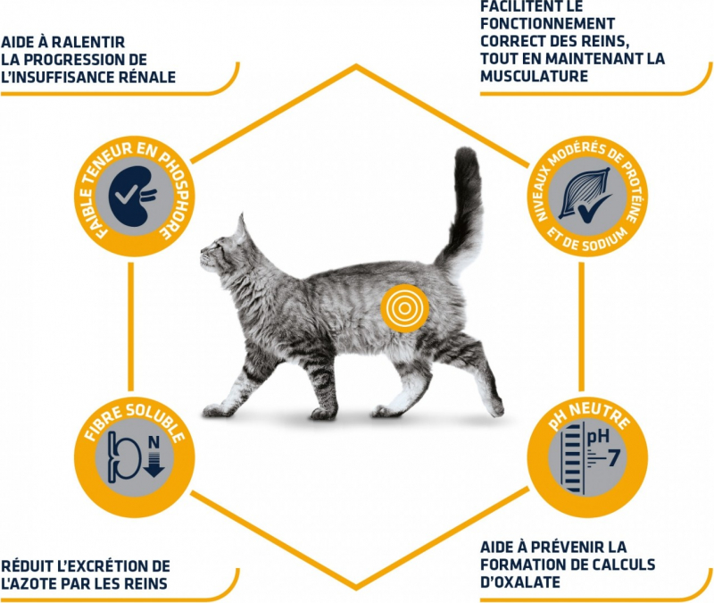 Advance Veterinary Diets Renal pour chat