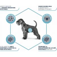 Advance Veterinary Diets Gastroenteric pour chien adulte