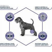 Advance Veterinary Diets Articular Care pour chien