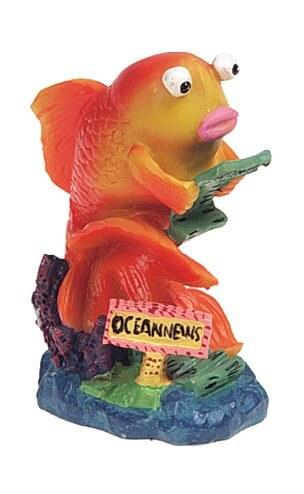 D coration poisson rouge pour aquarium d cor fantaisie for Poisson rouge a donner