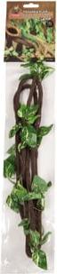 Liana con hojas para terrario