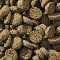JBL NanoPrawn 60 ml aliment pour crevettes