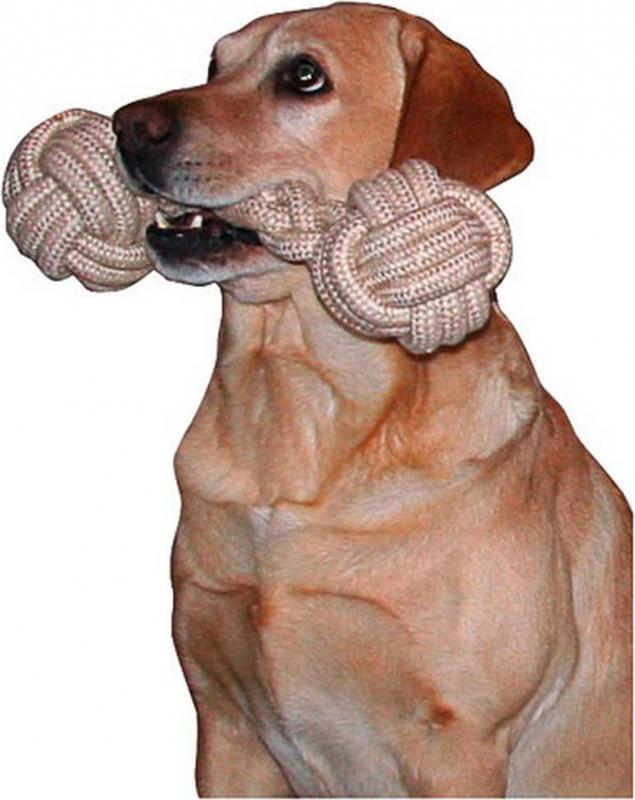 Jouet haltère en corde pour chien