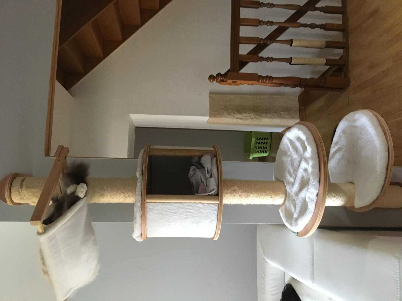 Arbre A Chat Mural Design dolomit scratching post system