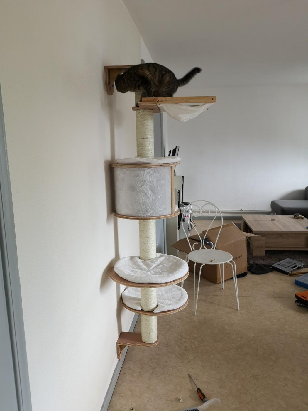 meinungen zu kratzbaum dolomit an der wand zu montieren. Black Bedroom Furniture Sets. Home Design Ideas
