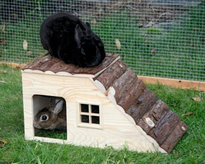 Refugio para roedores con rampa