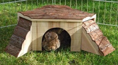 Rabbit Hideaway
