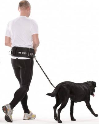 Ceinture ventrale avec laisse pour grand chien