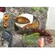 Decoration-aquarium-cube-habitat_de_Carolina _16533937815b882469240033.75723950