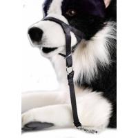 Muselière d'entraînement et du contrôle du chien - Dog Control