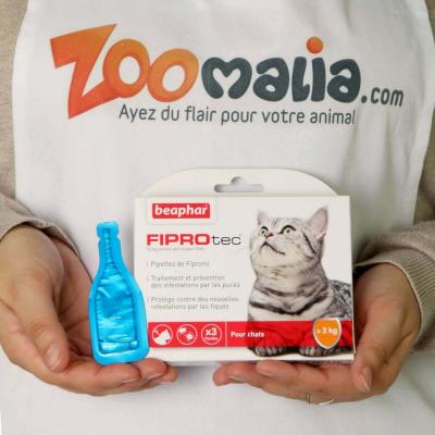FIPROtec Solution spot-on pour chat au Fipronil