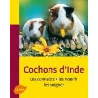 Cochons d'inde - les connaitre les nourrir les soigner - Editions Ulmer (1)