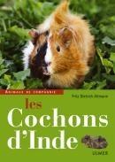 Les cochons d'inde - Editions Ulmer