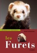 Les furets - Editions Ulmer