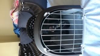 21405_Transportín-Linus-CABRIO-para-perro-y-gato--_de_NATALIA_48894006258a2be38f37512.24563001