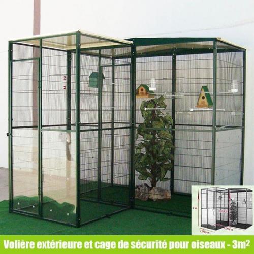 Questions sur voli res d 39 ext rieur ou d 39 int rieur for Oiseau de voliere exterieur