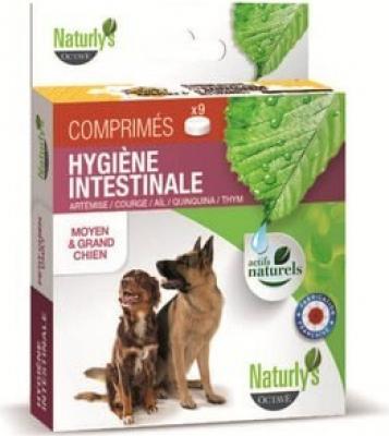 Comprimés vermifuges moyen et grand chien (aux plantes)