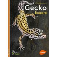 Geco leopardo