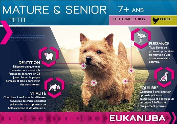 Eukanuba Mature & Senior pour Chien Senior de Petite Taille