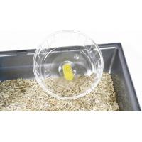 Cage pour Hamster - 46,5 cm - Martha