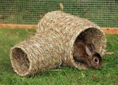 Tunnel végétal en herbe séchée naturelle