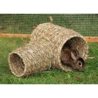 Túnel vegetal de hierba seca natural