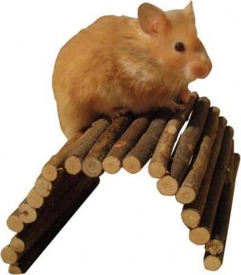 Passerelle en bois - flexible