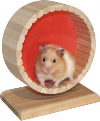 Roue d'exercice pour hamster