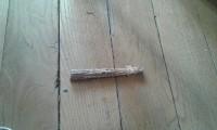 Sticks-a-ronger-Nature-_de_Frederique_13177215455be59cfa9457d9.10743627