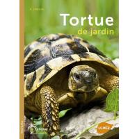 Libro Tartaruga da giardino