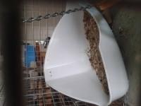 21854_Toilette-d'angle-pour-rongeurs---Plusieurs-tailles_de_dehlia_202352282155410ae3eb4d91.64514123