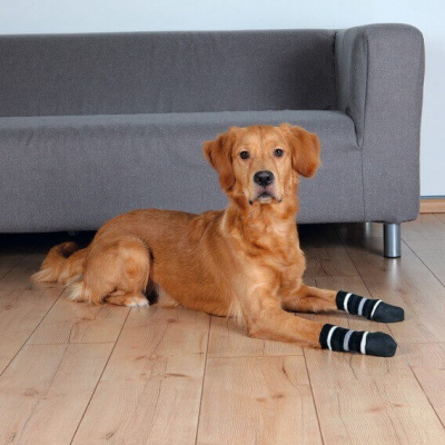 Chaussettes pour chiens noires par 2pces
