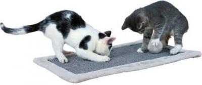 Cat Scratching Rug