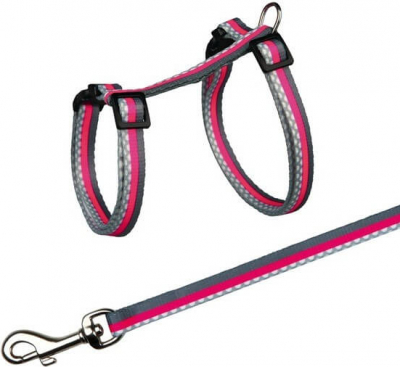 Cat Harness with Lead, Nylon