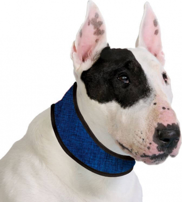 Collar refrescante color azul -  Cooling Collar Pacific Blue