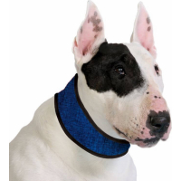 Collier rafraîchissant bleu - Cooling Collar Pacific Blue