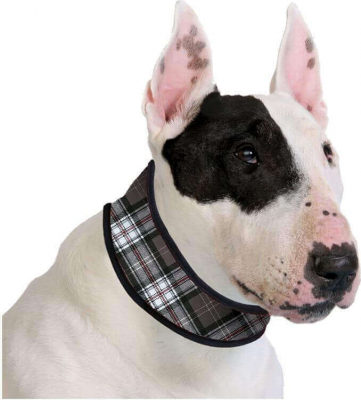 Collier rafraîchissant gris à carreaux - Cooling Collar Scottish Grey