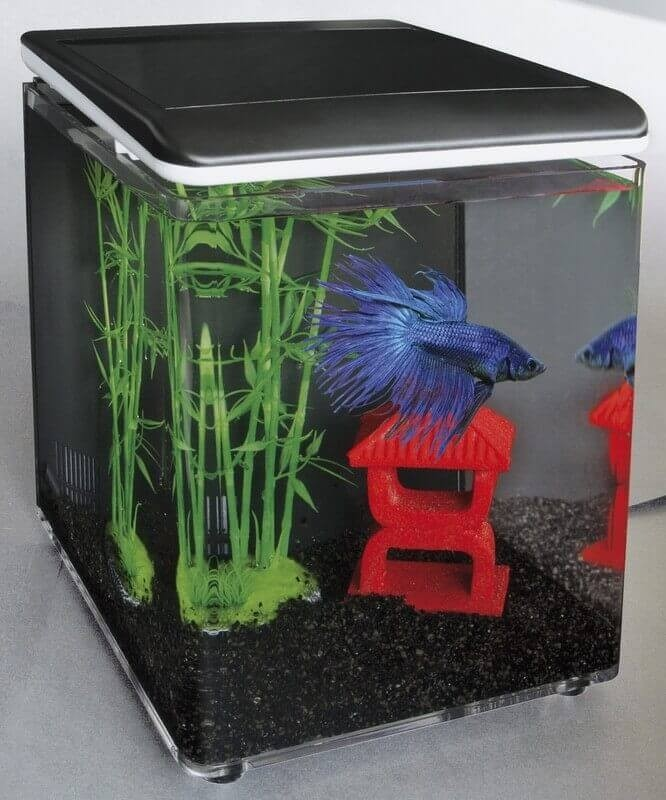Home 8 et Betta Kit - mini aquarium acrylique_2