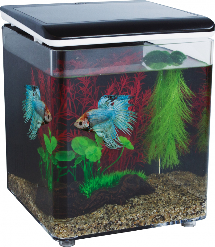 Mini aquarium acrylique HOME 8 SuperFish