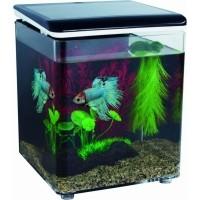 Mini aquarium acrylique HOME 8 SuperFish (4)