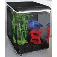 Mini aquarium acrylique HOME 8 SuperFish (3)